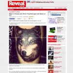 KP Reveal Mag